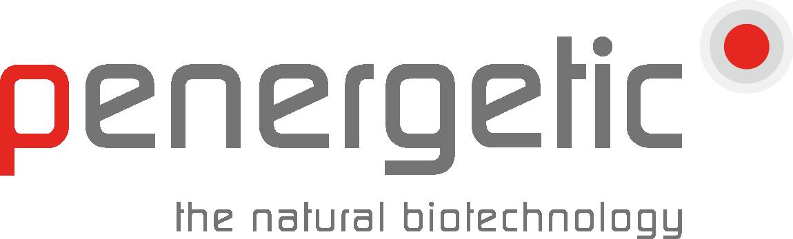 Logotyp_penergetic